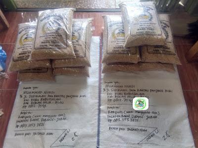 Benih padi TRISAKTI NEW 50 Kg atau 10 Sak  Pesanan MUAMMAD NURDI Rokan Hilir, Riau.  (Sebelum Packing)