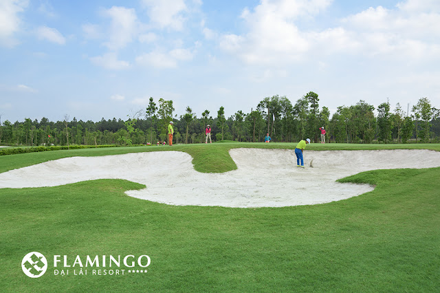san golf flamingo dai lai