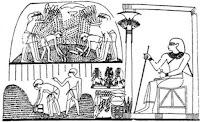 صورة توضح تخزين المحاصيل وعدها والمشرف عليها مر شنوت مسئول التخزين او الشون