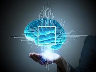 La historia de nuestro cerebro