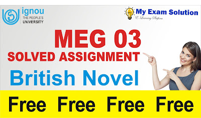 british novel free assignment, myexamsolution, my exam solution, ignou assignment