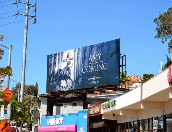 Amy Schumer season 3 teaser billboard