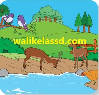Kunci-Jawaban-Kelas-3-Tema-6-Halaman-131-134-135-Subtema-3-Pembelajaran