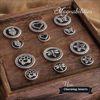 Magnabilities Charming Inserts