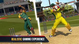 Top 5 Offline Cricket Games