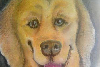 Mewarnai gambar seekor anjing menggunakan pastel