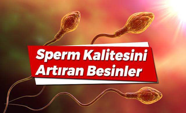 Spermi etkileyerek gebelik şansını artıran mucizevi besinler
