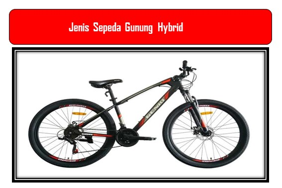 Jenis Sepeda Gunung Hybrid