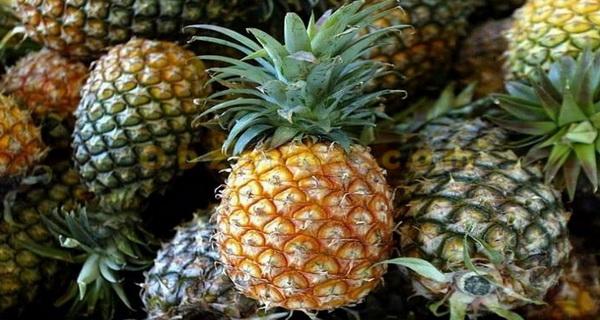 consuma ananas
