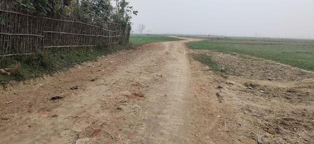 कब बनेगी पथ बेनीपट्टी के डिहूलीशेर से उच्चैठ और बरांटपुर जानेवाली सड़क