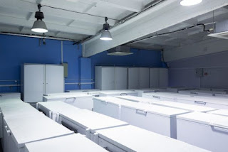Highly Specialized Cold Storage Facilities