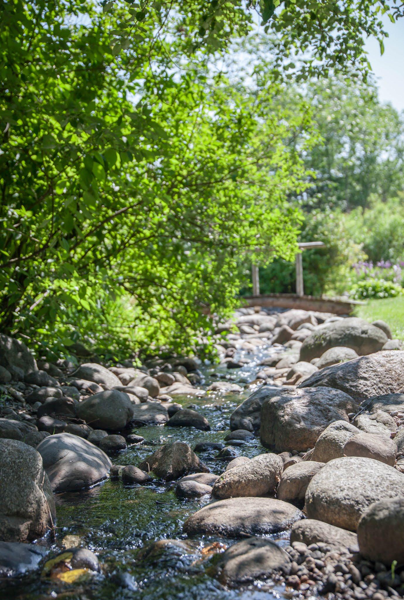 Kasintehtya Ja Kaunista Kumpulan Kasvitieteellinen Puutarha