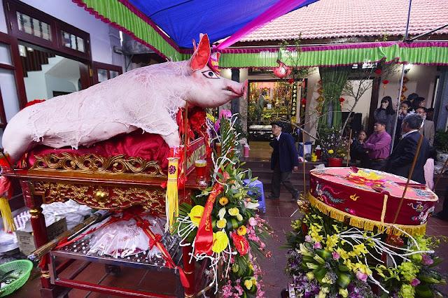 Pig procession festival in La Phu 3