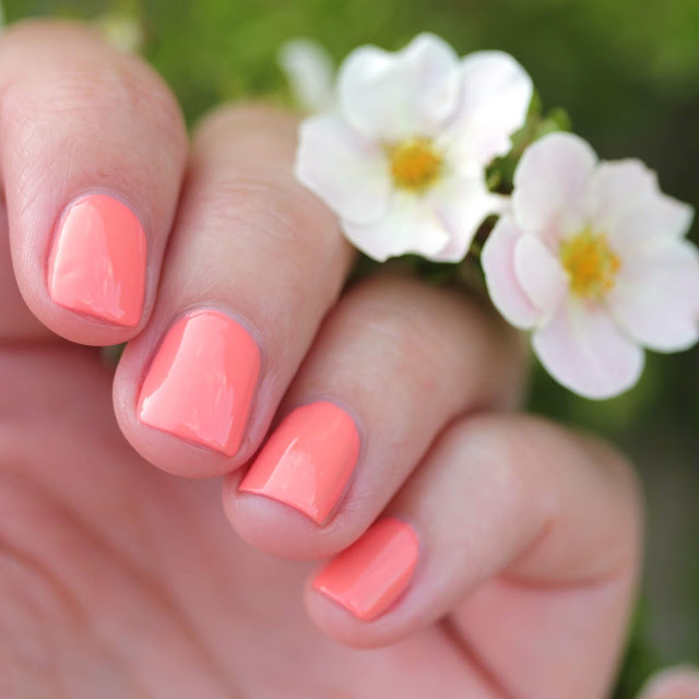 Girly Bits What in Carnation? Small Batch swatch by Streets Ahead Style