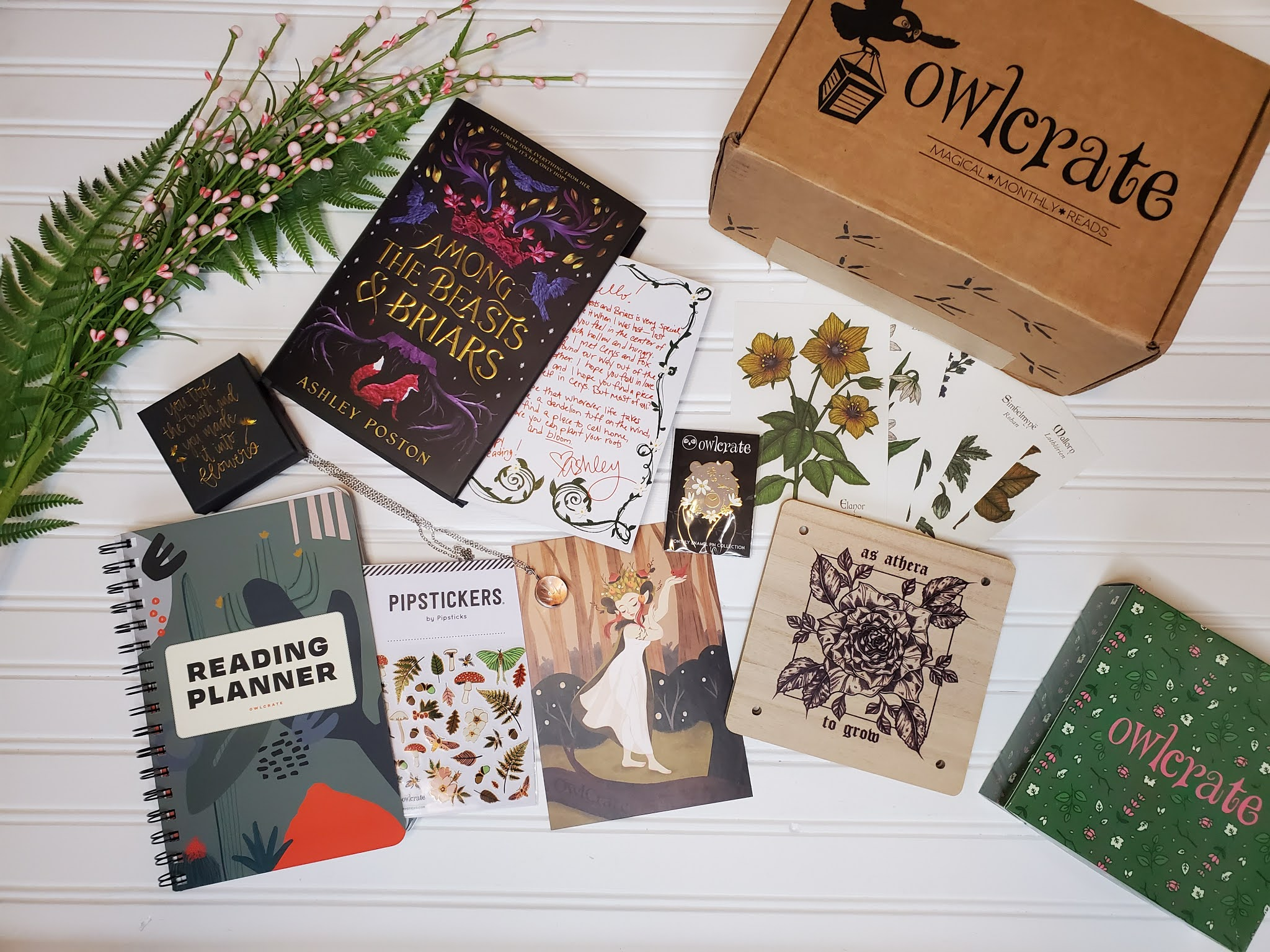 November Owlcrate