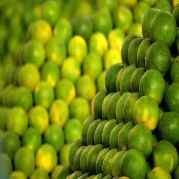 मोसंबी, Sweet lemon fruits name in Marathi