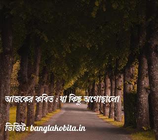 বাংলা কবিতা যা কিছু অগোছালো