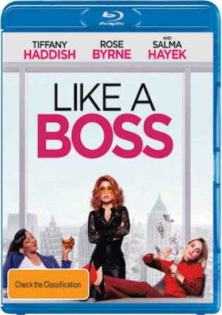 Like a Boss 2020 BRRip 900Mb Hindi Dual Audio ORG 720p
