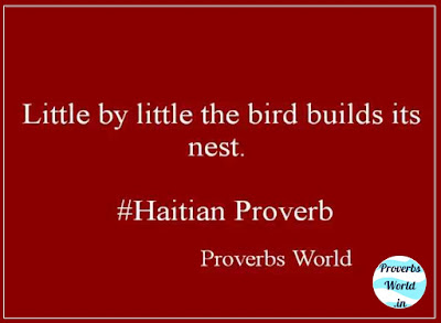 little by little the bird builds its nest, proverb, proverbs world, proverb sentenses