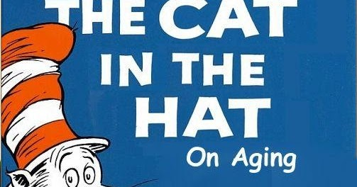 Funny Cat In The Hat Pics