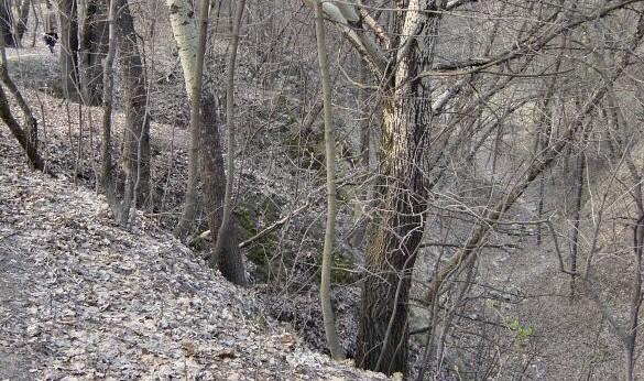 El barranco de Babi Yar. (CC BY-SA Marca Voorendt - Wikipedia)