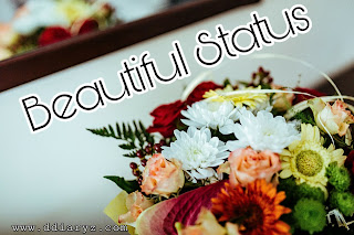 Beautiful Status and Quotes