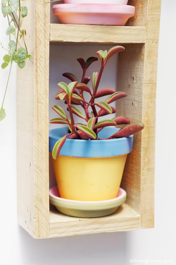 Diy jardín vertical mini