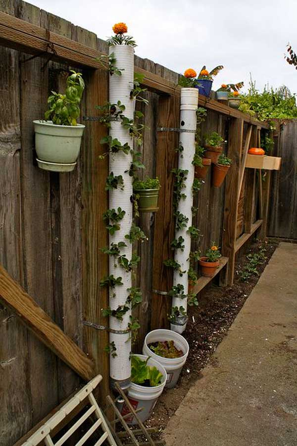 15 Low-Cost DIY Gardening Projects Made With PVC Pipes ...