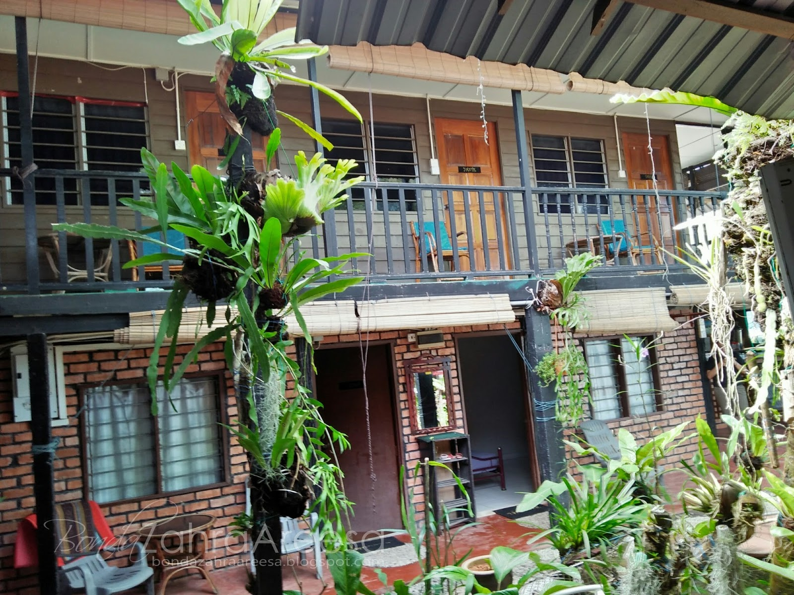 Ali Guesthouse, guesthouse batu feringghi
