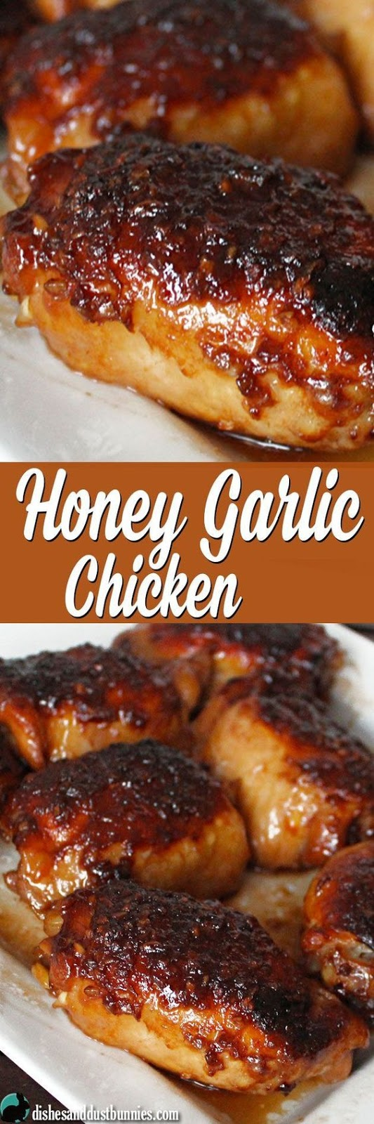 Honey Garlic Chicken (plus some really tasty sauce!) - Chicken Recipes