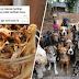 'Anjing tu haram, nanti restoran saya pula terlibat dosa' - Pemilik enggan sedekah sisa makanan untuk 36 ekor anjing