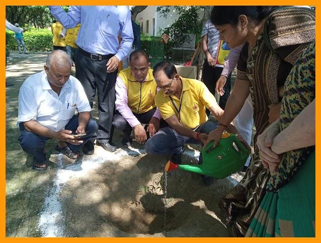 नागरिक सुरक्षा और ग्रीन प्लाटून ने किया पौधरोपण