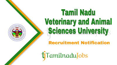TANUVAS Recruitment 2020, TANUVAS Recruitment Notification 2020, govt jobs in tn, tn govt jobs