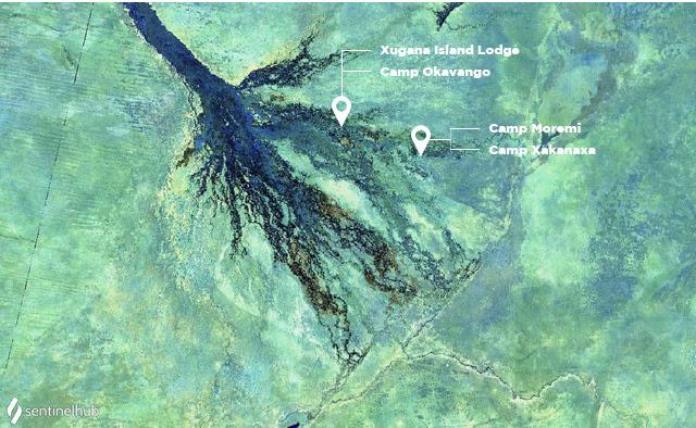 Okavango Delta in June 2020