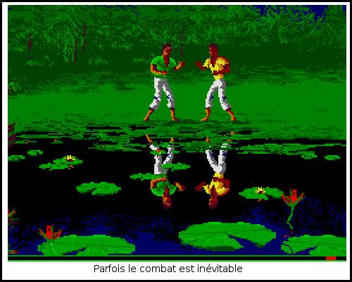 [TEST]ROM - Les Guerriers de l'ombre - Atari St/Amiga Freedom9