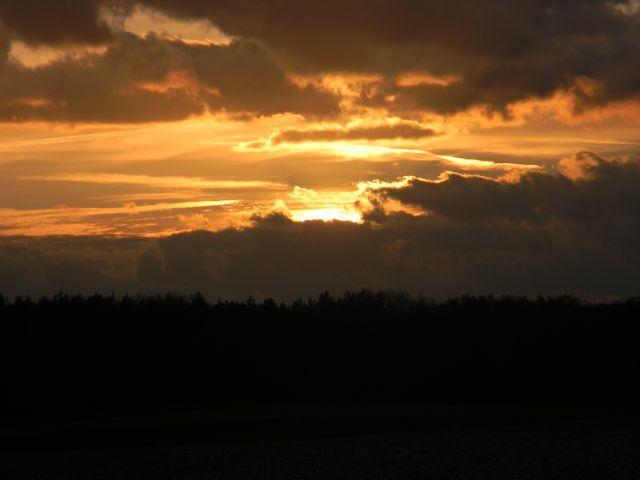 zza lasem, zapada zmrok, horyzont, światło