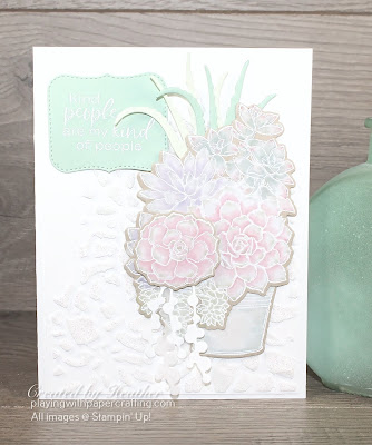 simply succulents for new at su blog hop 1