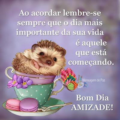 Ao acordar lembre-se sempre que o   dia mais importante da sua vida   é aquele que está começando.  Bom Dia Amizade!