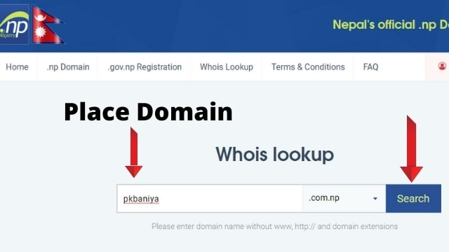 check .com.np domain age