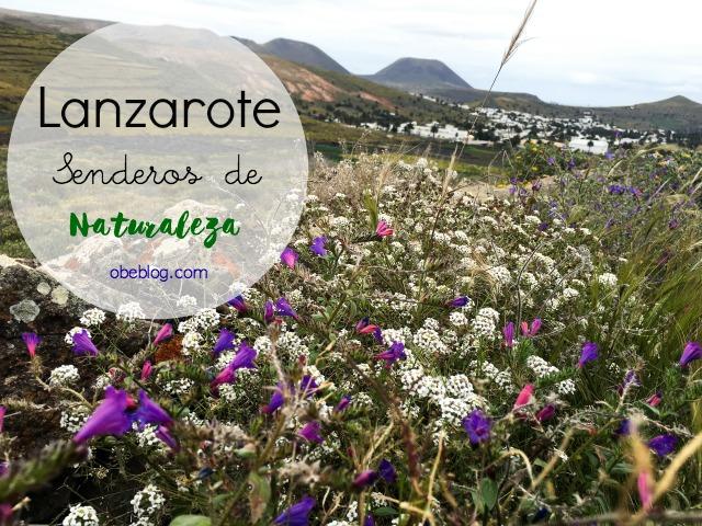 Lanzarote_Senderos_Naturaleza_Haría_ObeBlog_06