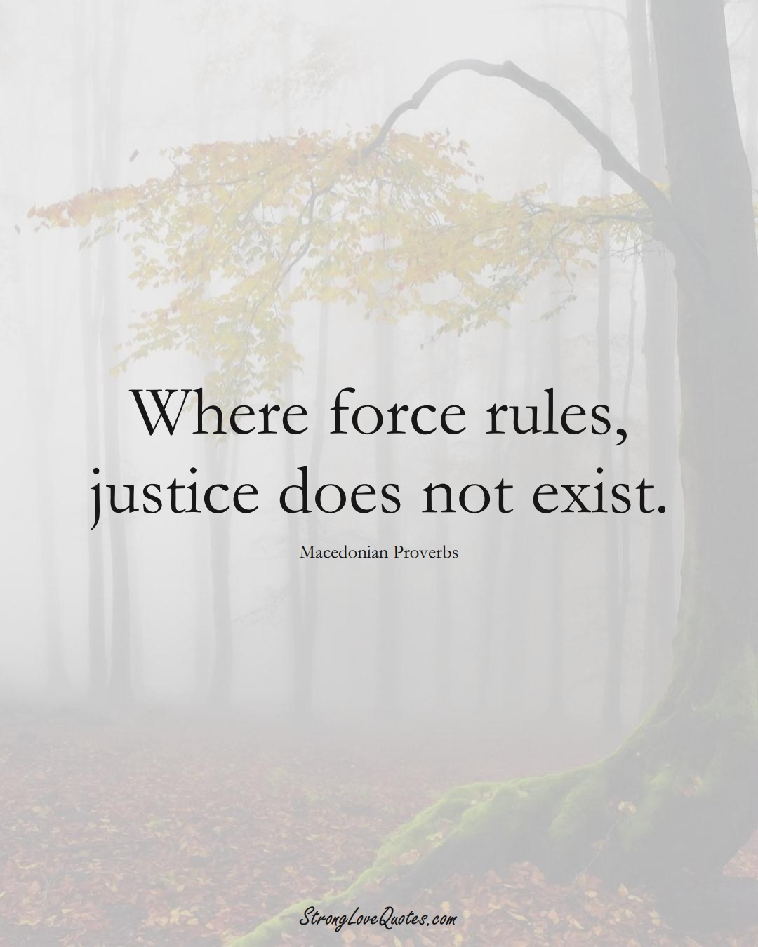 Where force rules, justice does not exist. (Macedonian Sayings);  #EuropeanSayings