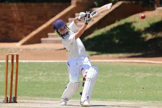 Cricket, Batsman