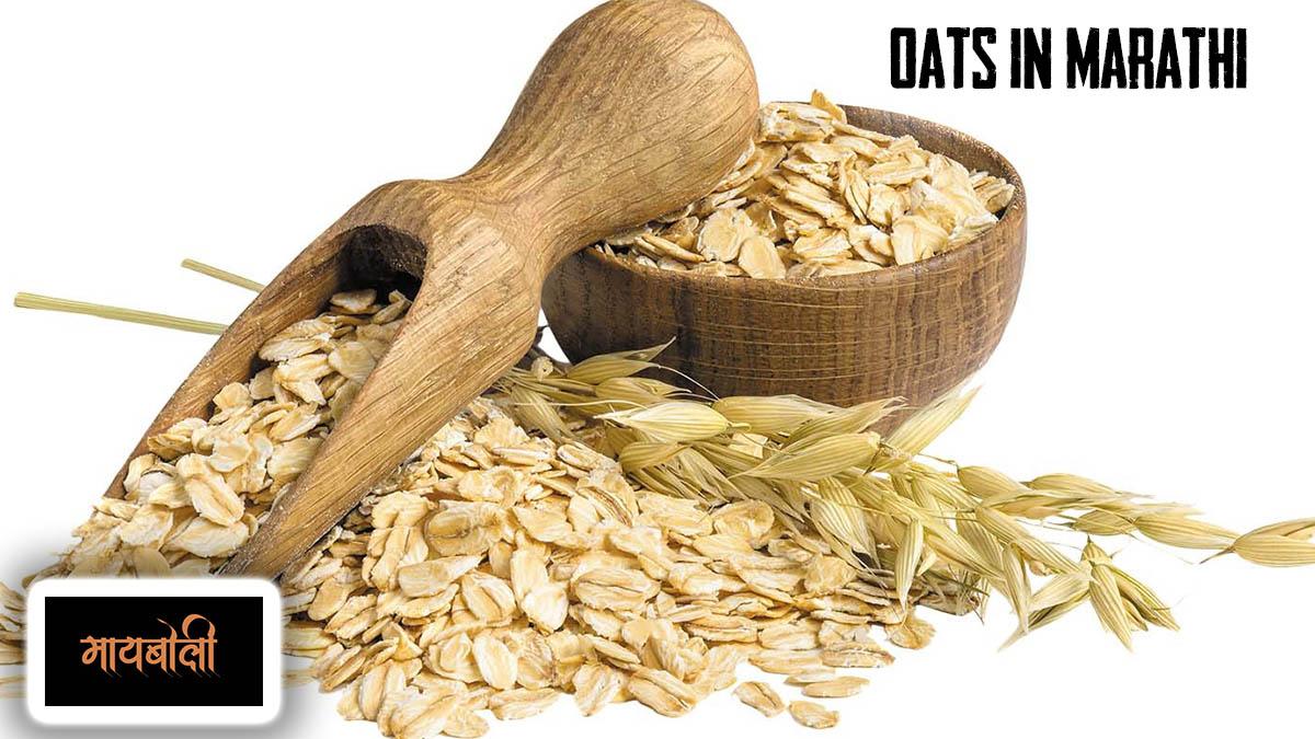 Oats Meaning in Marathi