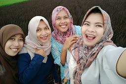Tempat Holiday Sawah Ungu di Jawa Barat Paling Keren, Wajib Sobat Ketahui...