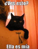 meme de gato tattoo