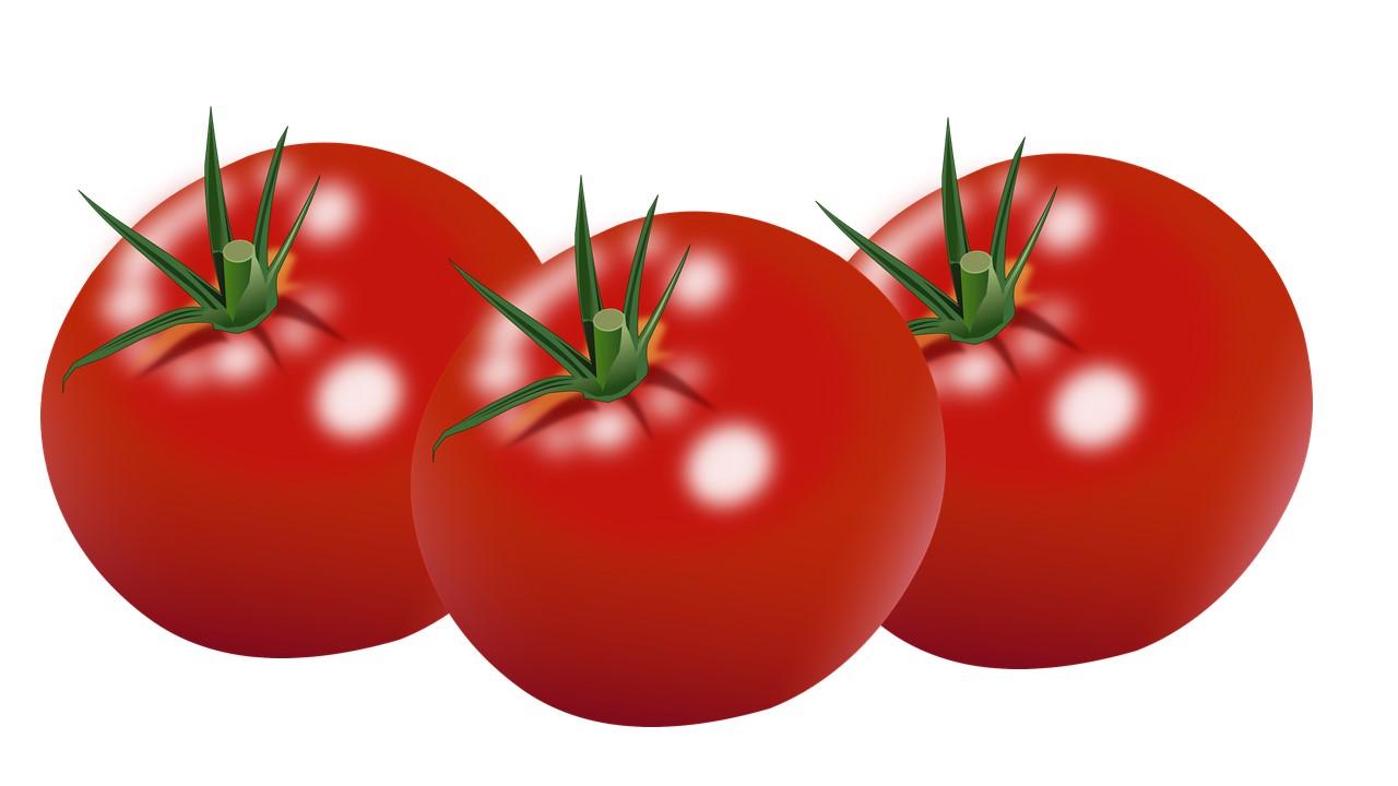 فوائد الطماطم للرجال، فوائد أكل الطماطم للبشرة، فوائد الطماطم للمرأة، فوائد الطماطم للبشرة، فيتامينات الطماطم، أضرار الطماطم، خصائص الطماطم، فوائد عصير الطماطم