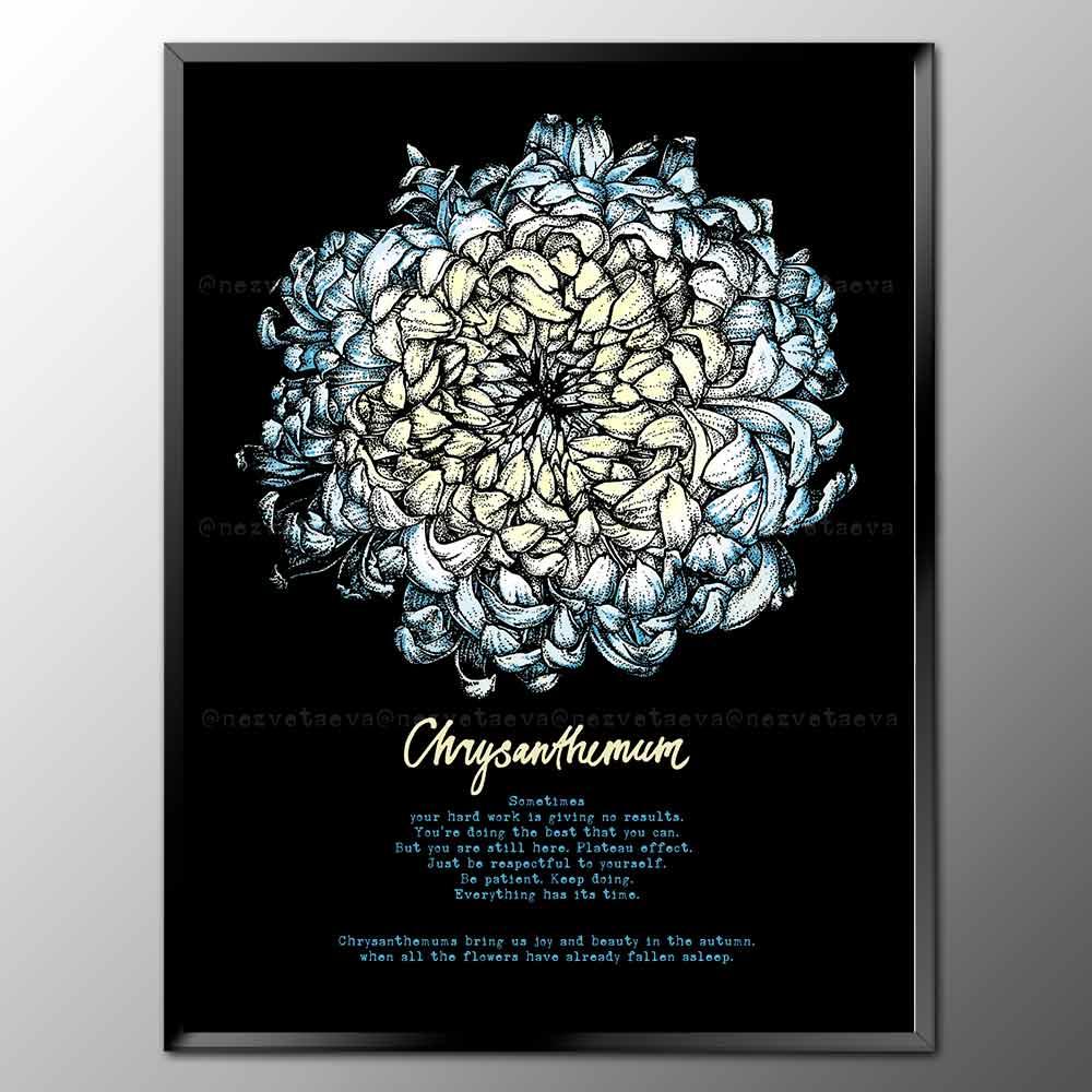 Chrysanthemum, motivation poste, Sonia Nezvetaeva