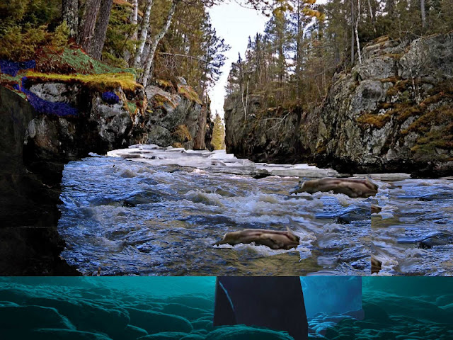 Narrows Gorge Underwater