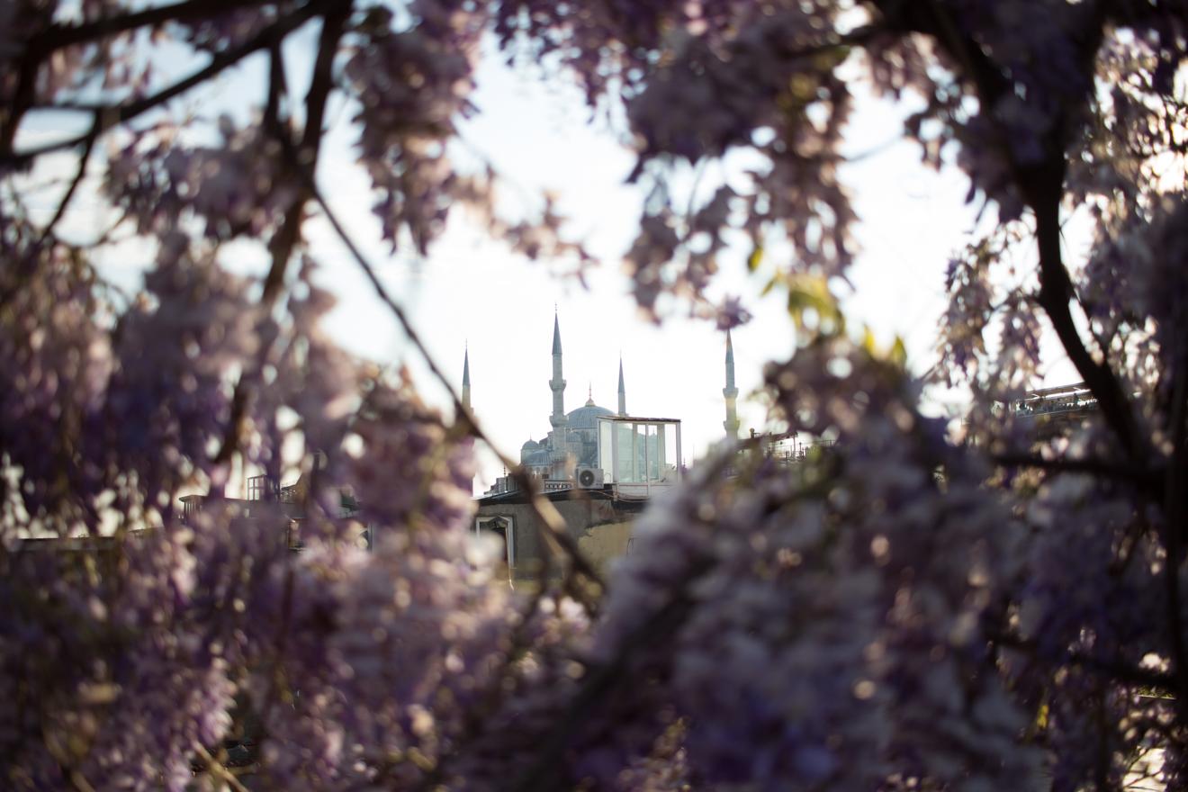 LinnDubh - Istanbul - 8 Tipps für deinen Urlaub in Istanbul - Blaue Moschee