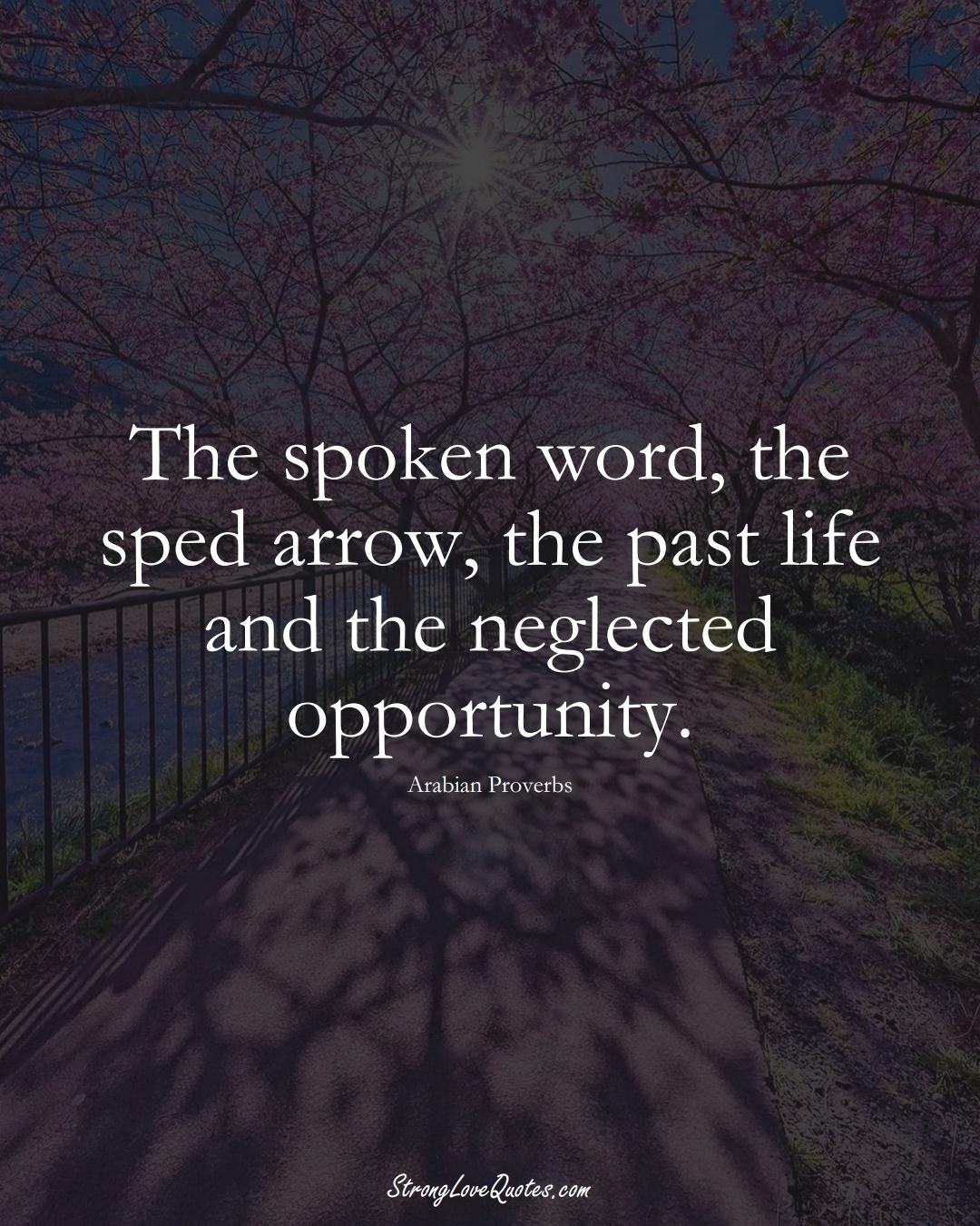 The spoken word, the sped arrow, the past life and the neglected opportunity. (Arabian Sayings);  #aVarietyofCulturesSayings